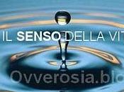 """Canzoni spot senso della vita"""" (TESTO VIDEO)"""