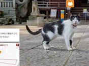 Marketing Turistico Giapponese: killer Street View.