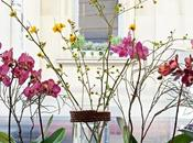Bouquet Bistrot