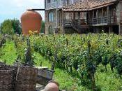 Dieci Regioni vinicole watch next future