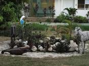 Haiti amour/2