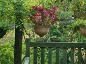 Gabriella Lizza: pratica dell'ascolto giardino
