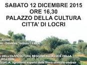 Oliva olio Geracese progetto integrato della Locride.
