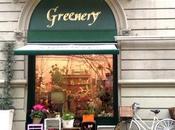 Greenery: fiori Parma