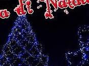 Cavalla notturna prima Natale