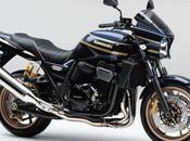 Kawasaki 1200 DAEG 2016