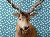 Recensione Gulasch cervo. Caccia tesoro cuore della Baviera
