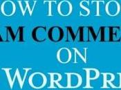 Stop Spam Comments WordPress