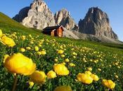 Guida turistica Trentino: montagna tutto l'anno.