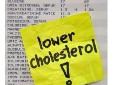 falsi miti colesterolo