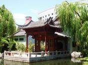 spasso Sydney: Chinese Garden Friendship