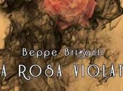 Beppe Briganti