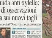 Xylella: osservazioni consegnate Dipartimento parte degli esperti