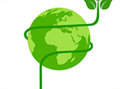 rivoluzione della green economy: nuove norme acquisti verdi nella Pubblica amministrazione