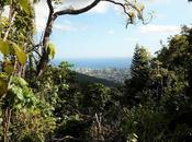 Viaggio alle Hawaii mare vulcani: intervista Matt