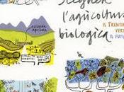 Salento: condotta agricoltura biologica della totale superficie investita oliveto