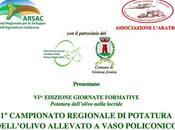 Campionato potatura Calabria.