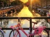 ragioni amare Amsterdam