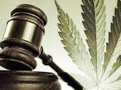 Marijuana legale? muore meno farmaci