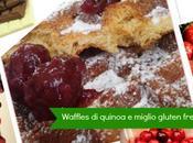 Waffles quinoa miglio gluten free