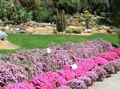 Orto Botanico Napoli: apertura straordinaria Gratuita giugno 2016