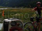 Viaggiare Mountain bike cane