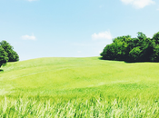 Girolomoni: storia pasta, amore biologico nelle Marche