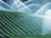 Agricoltura, acqua irrigui: rincari fino centesimi