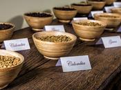 Mousse Caffè: scoprine segreti renderla irresistibile