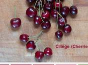 Food&Colors: Ciliege