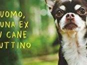 Solo cane