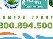 Servizio segnalazione reati mare dell'ambiente Demanio Marittimo