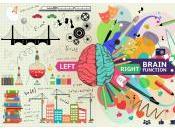 Emisferi cerebrali: loro funzioni