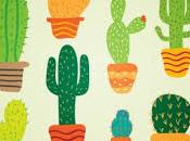 prossima volta cactus