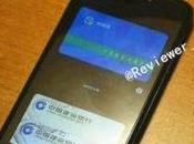 Xiaomi arrivo versione compatta pollici?