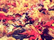 cose fare questo autunno