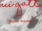 gatti Bukowski tenerone
