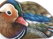 Sassi dipinti uccelli L'anatra mandarina