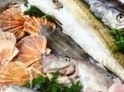 Fish Harvest Festival
