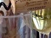 Tognazza adotta tappo canna zucchero zero emissione C02.