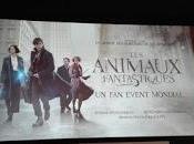 event: Animali Fantastici dove trovarli