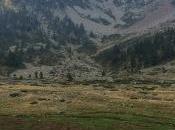Piemonte selvaggio