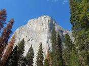 Consigli utili visitare Yosemite National Park