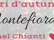 Montefioralle: colori d'autunno Chianti