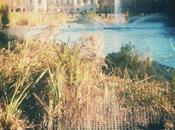 passeggiata Reale Jame's Park, London