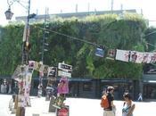 giardini verticali Patrick Blanc