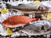 Pesce inquinato: quali specie evitare consumare
