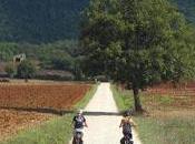 Slow Travel Fest 2016, giorni lungo Francigena Monteriggioni
