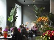 negozio fiori cucina