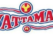 Yattaman coppia della giustizia